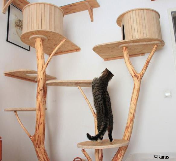 einrichtungsideen und anregungen f r die katzenwohnung problemkatze nathalie aigner. Black Bedroom Furniture Sets. Home Design Ideas