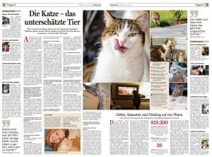 Wesen_einer_Katze_oÖ_Nachrichten