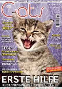 Overgrooming_OurCats_9.14