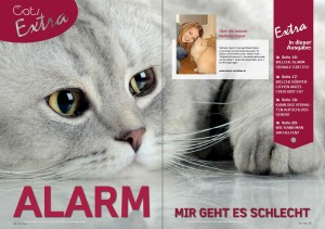 Alarm_1_OurCats_1.15
