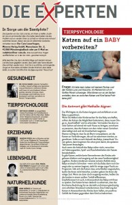Frage_Baby_1_OurCats_1.15