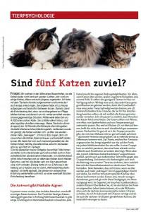 Fünf_Katzen_zuviel_2.15_1
