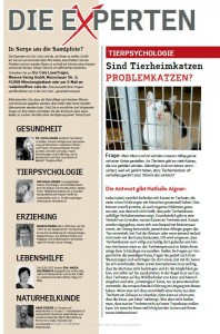 Tierheimkatzen_Problemkatzen_1