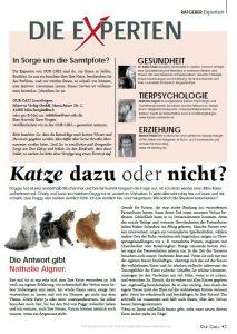 Katze_dazu_oder_nicht_5.16
